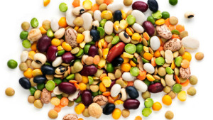 Pulses-in-bakery-Consumers-ready-for-protein-fiber_strict_xxl-300x169